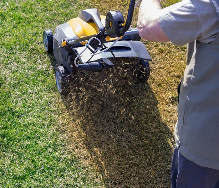 denver lawn aeration