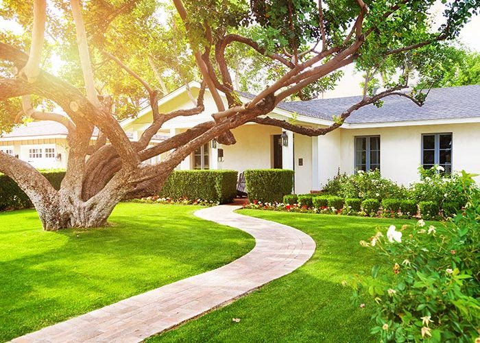 residential landscaping denver